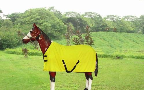 horse rug-summet sheet