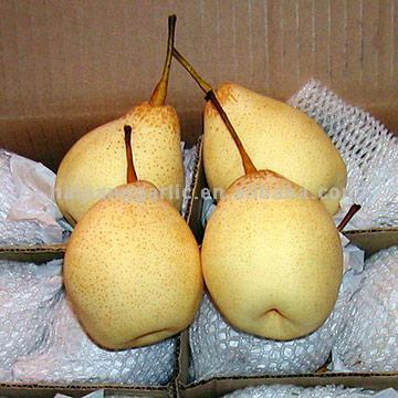 3) Other varieties: golden pears, Fengshui pears, earlier Su.