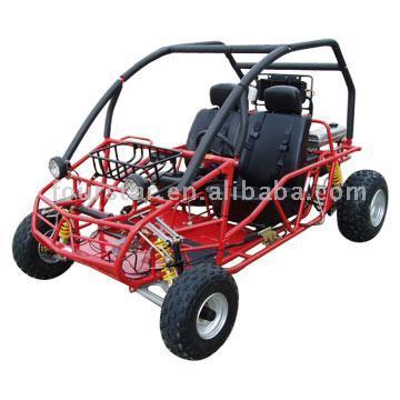 Go Kart 250CCs