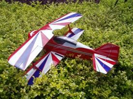 Arf Rc Model Plane (2c)