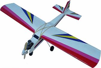 Arf Rc Model Plane (40 Aero)
