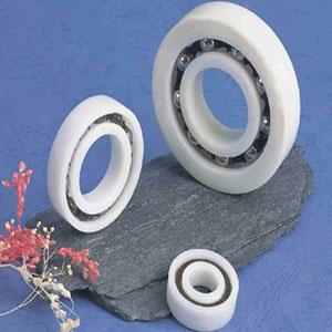 Full plastic bearing