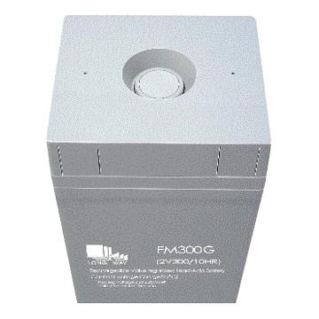 Large Size Sealed Lead Acid Battery