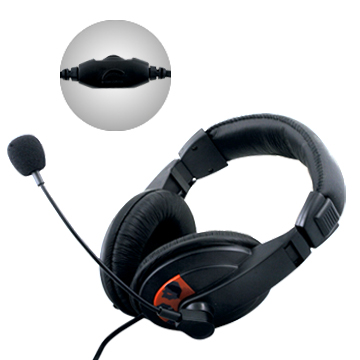 stereo headphone / headset / microphone / earphone for computer