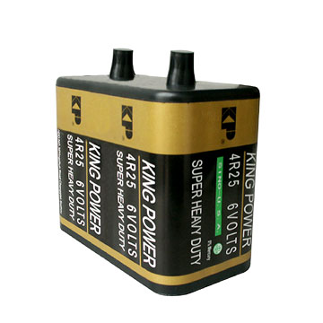 digital camera battery