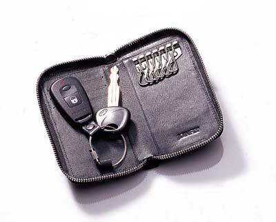 zf2583 key purse
