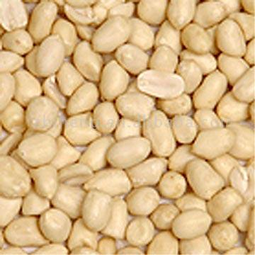 Blanched Peanut Kernels ( Round Sharp )