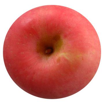 Yantai Fuji Apples