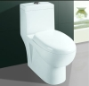 one piece washdown toilet