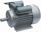 TYBZ Synchronous motor