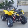 250cc ATV / QUAD with CE
