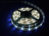5050SMD LED Strip Light (Waterproof)