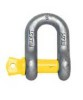 Dee Shackle Forged Alloy With Screw Pin
