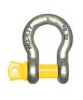 Bow Shackle With Screw Pin