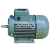 Three-phase Induction Motor