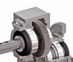 Gear for Worm Gear Box