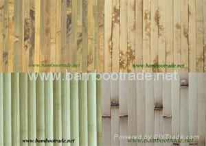 Bamboo Wallpaper (wall coverings)