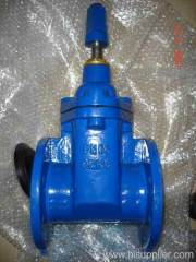 Resilient Non-rising Gate Valve
