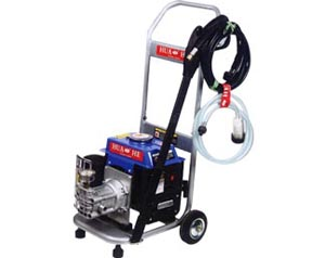 Portable Gas High-Pressure Washer