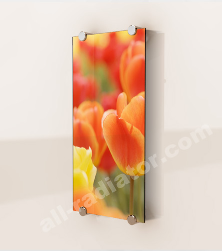 Photograph glass radiator