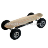 800w Wireless Remote Control Electric Skateboard