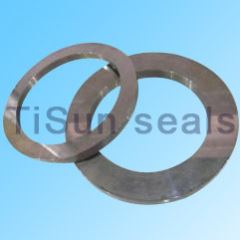 Tungsten Carbide Seal parts