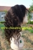 Indian remy hair long style full lace wig