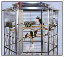 Welded Bird Cage