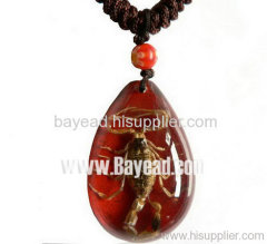 Insect Amber Necklace