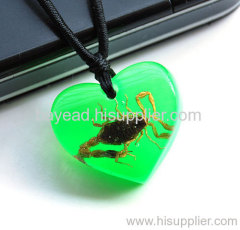 Real Insect Amber Necklace