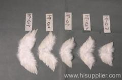 feather wing, angel wing