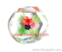 Real Flower Inside Resin Paperweights, Desktop Decoration, So Vivid, So Cute Gift, Craft