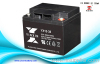 12V38AH maintenance free lead acid battery
