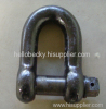D series standard shackle