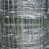 galvanized welded fence mesh