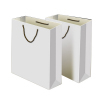 White Paper Carrier Bags