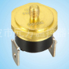 auto car thermostat
