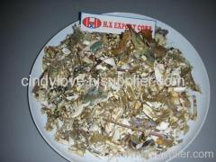 Dried Lobster Shell