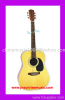 Acoustic Guitar Electric Guitar Classical Guitar String Instrument