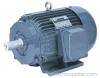 Induction Motor (Y2 three phase electric motor)