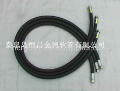 High Pressure Rubber Hose Assembly