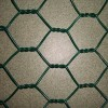 PVC hexagonal garden fence