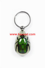 real bug keyring,real insect keyring,special gifts,executive gifts