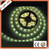 Nice &popular 3528SMD led strip light