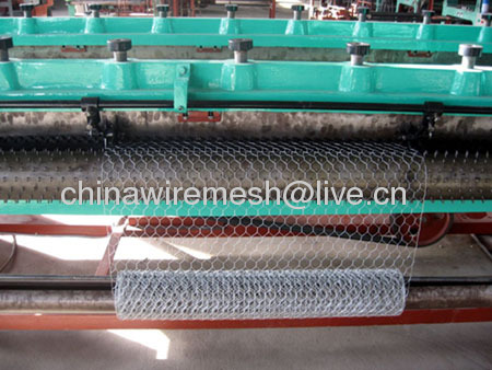 hexagonal wire netting(factory)