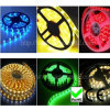 Christmas colorful 5050 SMD LED Strip Light