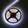 Flex LED Strip with 12V DC Voltage, Suitable for Signal Lighting and Advertisement Sign