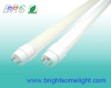 LED T8 Lighting BRS-T10W6F