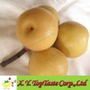 2011 fresh pear for export,fresh fruit and vegetable