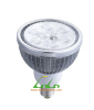 LED PAR38 Light, LED PAR, PAR38 Lamp, LED PAR Light